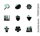 plant icons. vector collection...