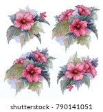 beautiful bouquets of flowers.... | Shutterstock . vector #790141051