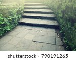 Stairway To The Natural Forest...