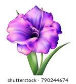 realistic vector flower.... | Shutterstock .eps vector #790244674