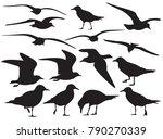 set of sea gull silhouette ... | Shutterstock .eps vector #790270339