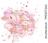 vector drawing rose flower and... | Shutterstock .eps vector #790357261