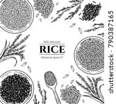 vector frame with rice . hand... | Shutterstock .eps vector #790387165