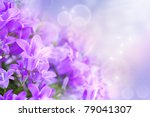 Stock photo beautiful spring background with campanula bouquet 79041307