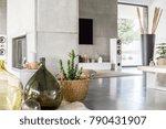 glass vase and cactus in...   Shutterstock . vector #790431907