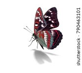 beautiful colorful butterfly...   Shutterstock . vector #790463101