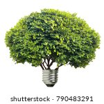 tree bulb isolated on white... | Shutterstock . vector #790483291
