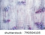 spring background with blooming ... | Shutterstock . vector #790504105
