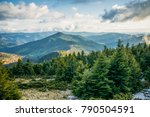 Green Mountain Forest In Sceni...