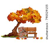 Cozy Bench Under The Autumn...