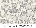 forest animals and plants... | Shutterstock .eps vector #790530511