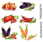 vegetables autumn harvest set... | Shutterstock .eps vector #790530979