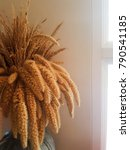 Small photo of Golden poaceae in a vase next to the window