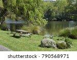 Ducks Squatting Beside A Pond...