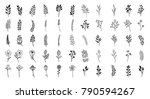 bloom collection. set of hand... | Shutterstock .eps vector #790594267