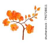 watercolor hand painted...   Shutterstock . vector #790728811