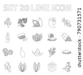 herb and spices outline icons... | Shutterstock .eps vector #790731571