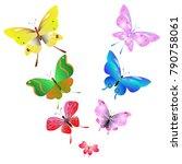 color beautiful butterflies ... | Shutterstock .eps vector #790758061