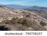 Views Of Thomas Fire Damage In...