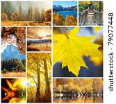 autumn collage | Shutterstock . vector #79077448