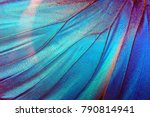 Stock photo detail of morpho butterfly wing 790814941