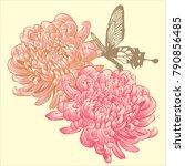 chrysanthemum vector  flower... | Shutterstock .eps vector #790856485