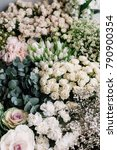 beautiful fresh blossoming... | Shutterstock . vector #790900354