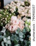 beautiful fresh blossoming... | Shutterstock . vector #790900357