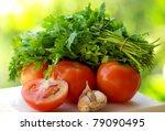 Tomato and green cilantro ingredients. - stock photo
