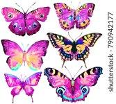 beautiful butterflies  set... | Shutterstock . vector #790942177