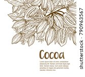cocoa beans illustration.... | Shutterstock .eps vector #790963567