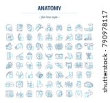 vector graphic set. icons in... | Shutterstock .eps vector #790978117