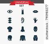 physique icons set with view ... | Shutterstock . vector #790983277