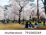 people having a picnic on the... | Shutterstock . vector #791060269