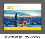 business brochure cover page... | Shutterstock .eps vector #791090491