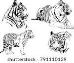 vector drawings sketches... | Shutterstock .eps vector #791110129