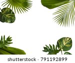 creative nature layout made of... | Shutterstock . vector #791192899