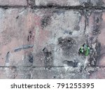 old tree on the wall | Shutterstock . vector #791255395