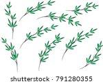 bamboo design vector | Shutterstock .eps vector #791280355