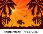 The Palms. Sunset. Summer. Hea...