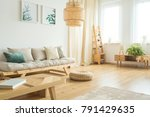 two posters of plants hanging... | Shutterstock . vector #791429635