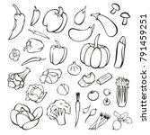 vector vegetables black and... | Shutterstock .eps vector #791459251