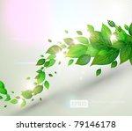 fresh green leaves and sun... | Shutterstock .eps vector #79146178