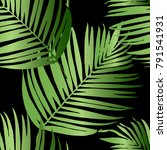 vector green palm tree pattern... | Shutterstock .eps vector #791541931