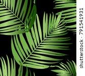 vector green palm tree pattern... | Shutterstock .eps vector #791541931