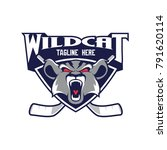 wildcat head vector for hockey... | Shutterstock .eps vector #791620114