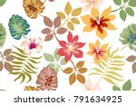 tropical light floral... | Shutterstock .eps vector #791634925