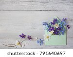 forest spring flowers in an... | Shutterstock . vector #791640697