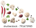 mushrooms with parsley isolated ... | Shutterstock . vector #791673985