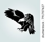 Vector Silhouette Of Flying...